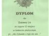 dyplom5-w800