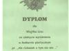 dyplom6-w800